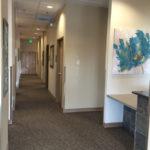 Hallway and Reception
